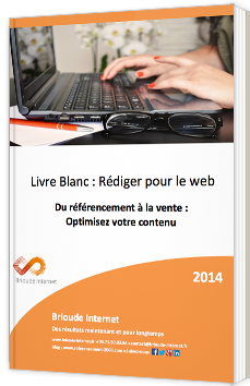 Rédiger pour le web – Du référencement à la vente : optimisez votre contenu