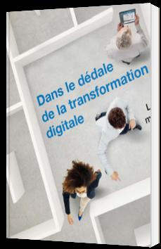 Dans le dédale de la transformation digitale