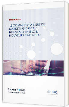 Le commerce à l'ère du marketing digital : nouveaux enjeux et nouvelles pratiques