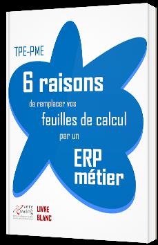 TPE-PME : 6 raisons de remplacer vos feuilles de calcul par un ERP métier