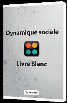Dynamique sociale - Livre blanc