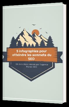 5 infographies pour atteindre les sommets du SEO