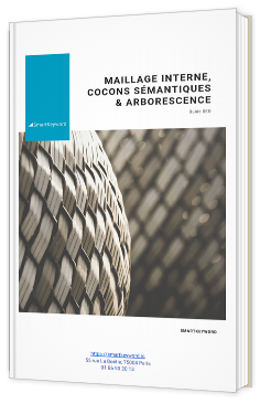 Maillage interne et cocon sémantique - Guide SEO