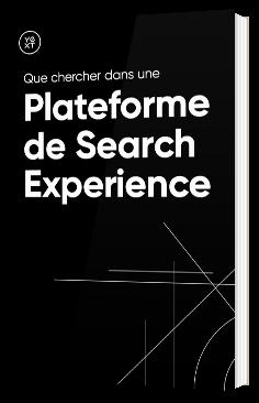 Que chercher dans une plateforme de Search Experience