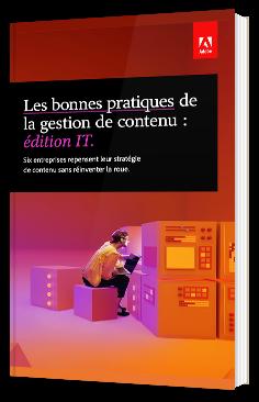 Les bonnes pratiques de la gestion de contenu : édition IT.