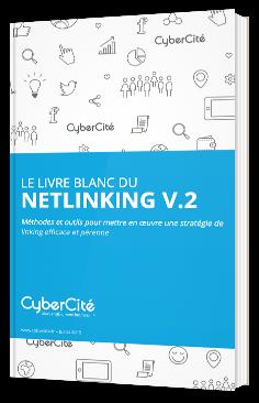 Le livre blanc du netlinking V.2