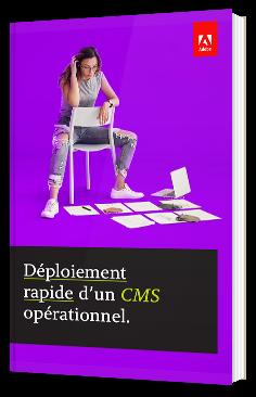 Déploiement rapide d'un CMS opérationnel.