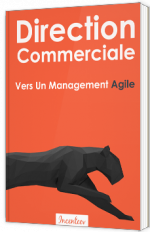 Direction Commerciale : Vers Un Management Agile