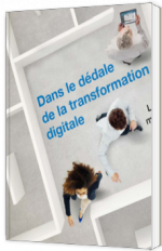 Dans le dédale de la transformation digitale