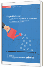 Digital Mindset - Acculturer son organisation, six témoignages d'entreprises en transformation