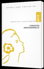 Annexe au projet de loi de finances pour formation professionnelle