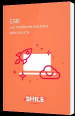 ESB - Les meilleures solutions open source