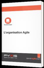 L'organisation agile