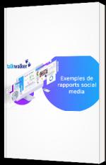 Exemples de rapports Social Media