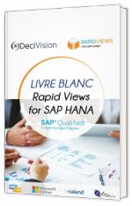 Rapid Views for SAP HANA
