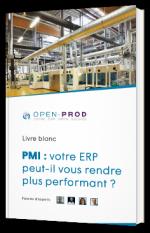 PMI : votre ERP peut-il vous rendre plus performant ?