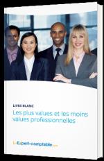 Les plus values et les moins values professionnelles