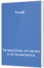 Perspectives on Issues in AI Governance