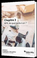 Chapitre III - BFR, de quoi parle-t-on ?