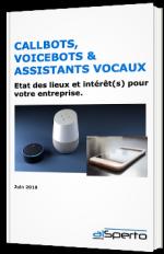Callbots, voicebots & assistants vocaux : état des lieux et intérêt(s) pour votre entreprise