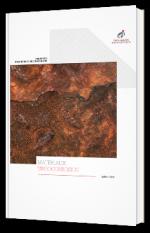 Comment protéger les matériaux métalliques de la tribocorrosion ?