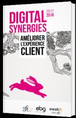 Digital Synergies : améliorer l'expérience client - 2017/2018