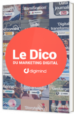 Dictionnaire du Marketing Digital et Social Media
