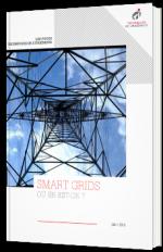 Les Smart grids en 2019 : où en est-on ?