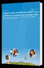 Rapport de tendances relatif aux petites et moyennes entreprises