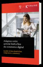 Adapter son activité B2B à l'ère du commerce digital : Justifier le bien-fondé d'une intégration e-commerce
