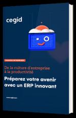 De la culture d'entreprise à la productivité : Préparez votre avenir avec un ERP innovant