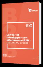Lancer et développer son e-commerce B2B : les clés du succès