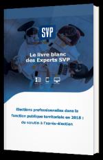 Elections professionnelles dans la fonction publique territoriale en 2018 : du scrutin à l'après-élection