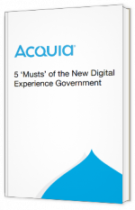 5 'Musts' of the New Digital Experience Government