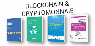 Comprendre la Blockchain et la cryptomonnaie