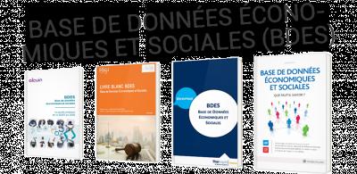 Tout comprendre de la base de données économiques et sociales (BDES)