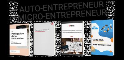 Auto-entrepreneur / micro-entrepreneur